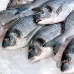 Il pesce e gli Omega 3