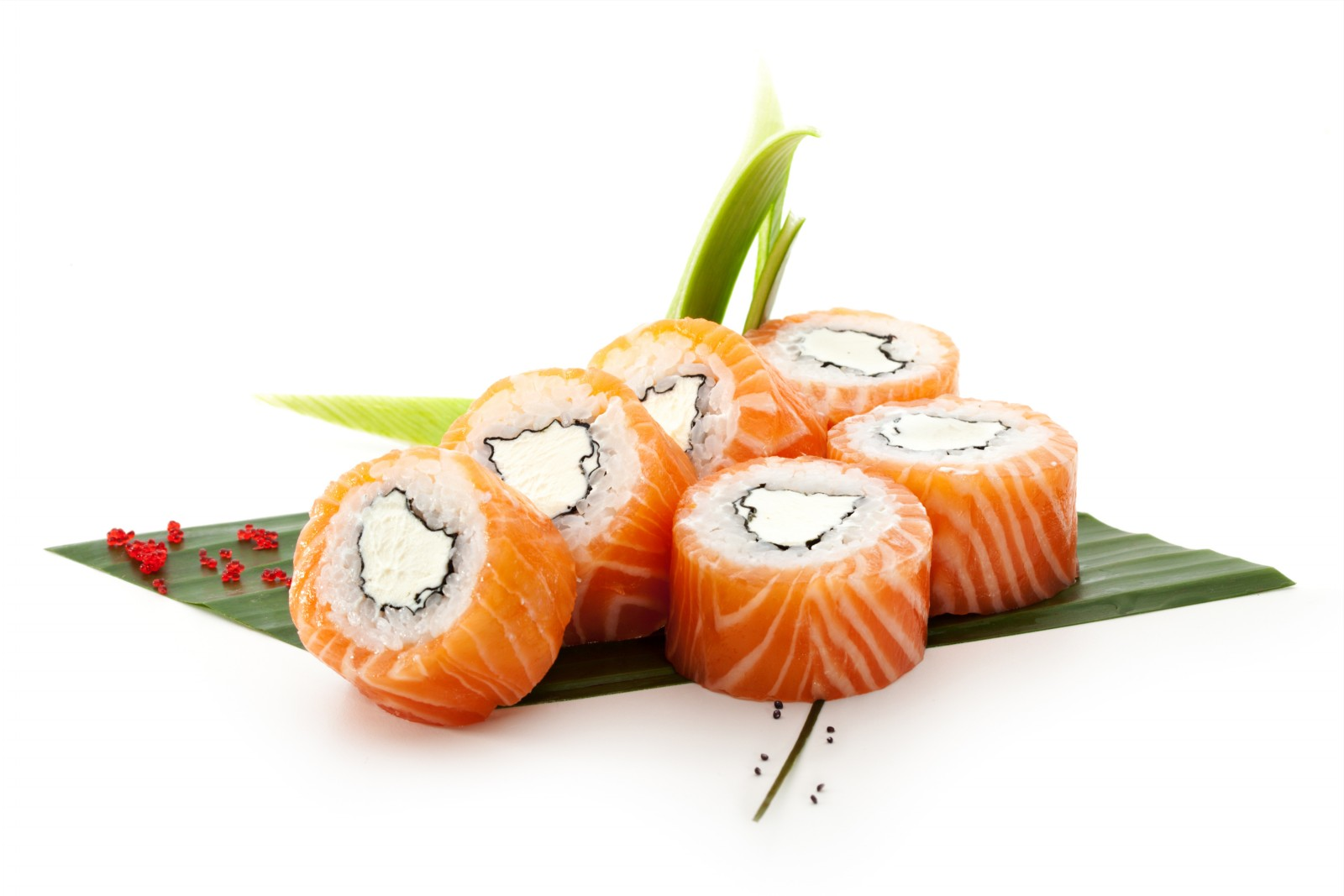 Sushi-+-Sashimi-Picture-A (1)