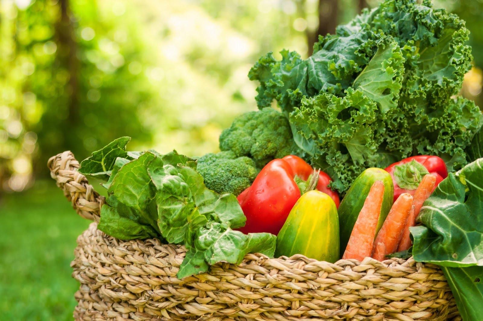 La dieta alcalina è davvero salutare?