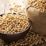 Cos'è la lecitina di soia?