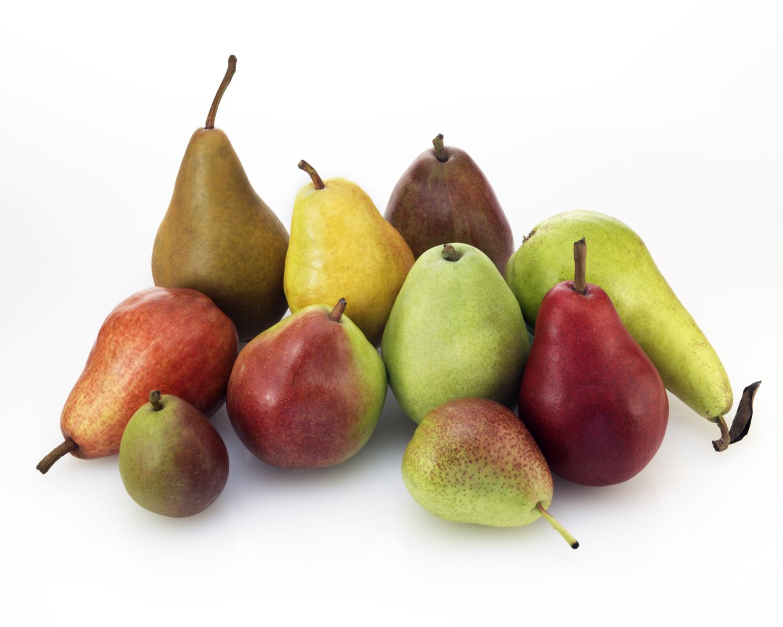Esistono più di 5000 varietà di pera