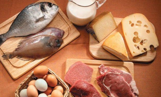 Fonti proteiche animali