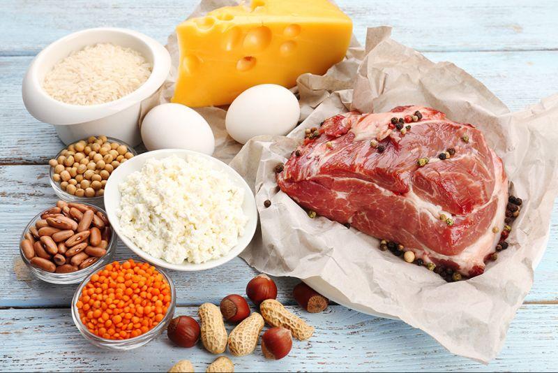 Proteine animali e vegetali