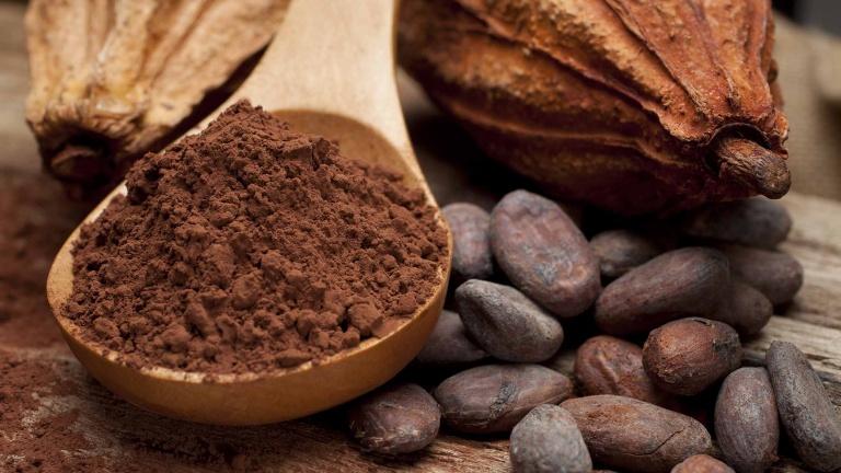 Cacao e semi di cacao