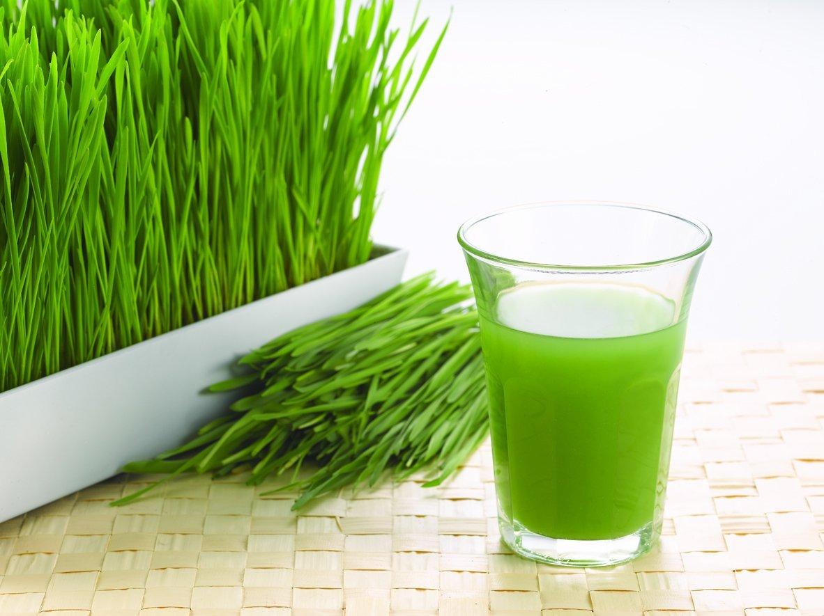 Succo di erba di grano