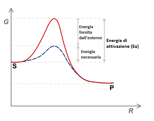 La velocità di reazione, con o senza l'azione dell'enzima